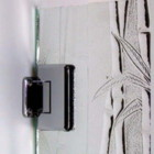 precision_glass_and_mirror_bamboo_image.jpg